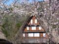 20060504shirakawagou