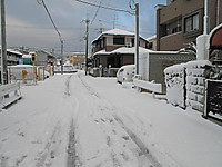 Img_1692s